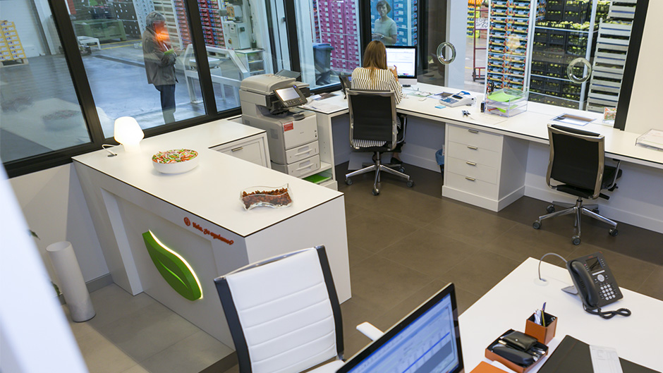 10-pixelarte-estudio-diseno-grafico-senaletica-oficinas-signage-Saibo-recepcion
