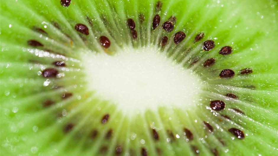 28-pixelarte-estudio-diseno-grafico-Saibo-importacion-frutas-fotografia-producto-kiwi
