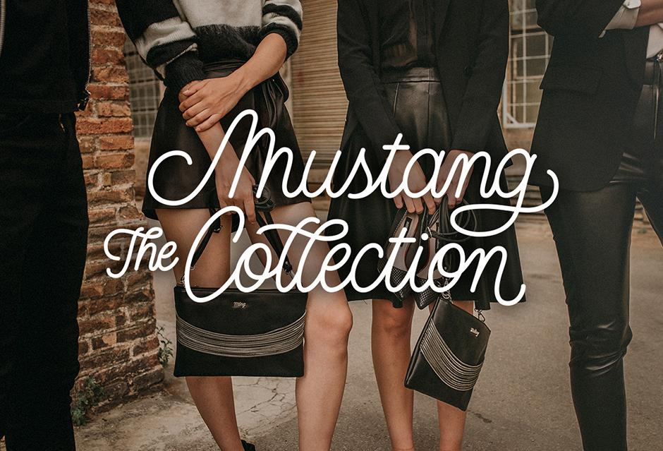 Pixelarte-estudio-diseno-grafico-lettering-Mustang-collection-segmentacion-marcas