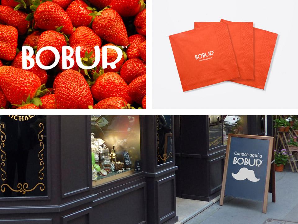 Elementos 2 imagen Bobur. Pixelarte estudio de diseño gráfico, creatividad y web.