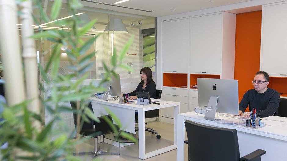 07-pixelarte-estudio-diseno-grafico-senaletica-interior-oficinas-signage-Saibo-importacion-exportacion