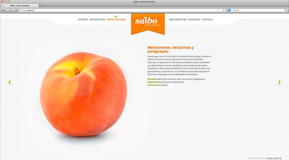 Saibo-Imagen-Web-entera2-pixelarte-diseno-grafico