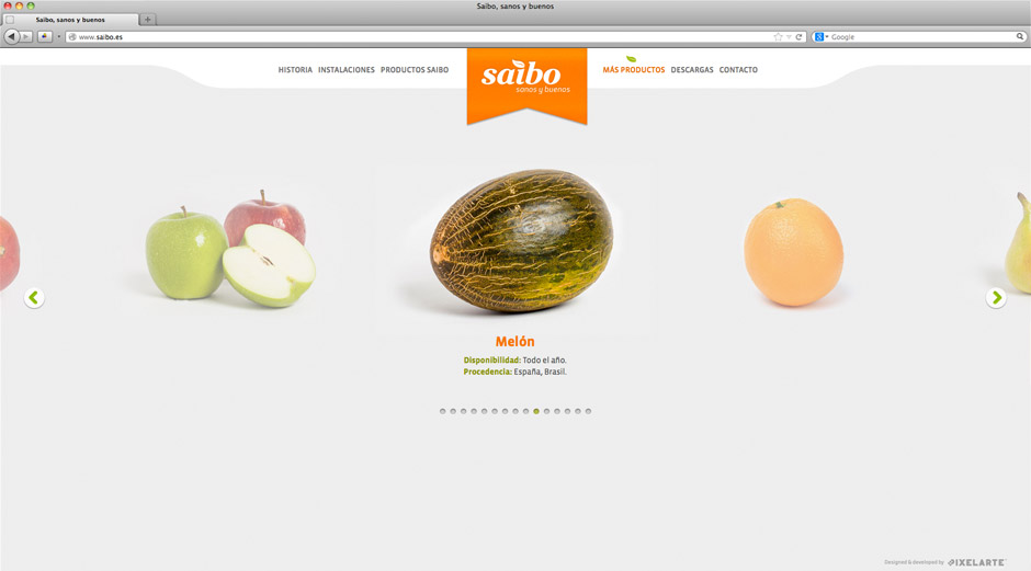 Saibo-Imagen-Web-entera3-pixelarte-diseno-grafico