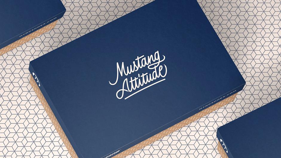 Pixelarte-estudio-diseno-cajas-calzado-Mustang-attitude